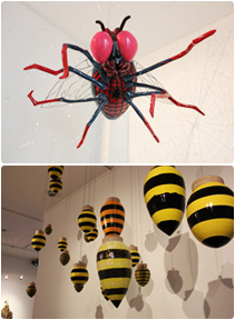 Educational Exhibition on Insects photo